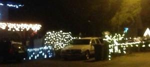 Weihnachtsstimmung an der Altwiesenstrasse.