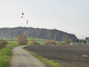 Fuss- und Spazierweh entlang des Steindlerbachs. Mit Ballonen markierte  die IG Nein zur Aushubdeponie Sendler/Teufermoos die Auffüllhöhe der geplanten Deponie.
